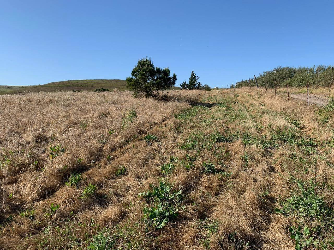 7. Lots / Land for Sale at 4655-4695 Sweeney Road Lompoc, California 93436 United States