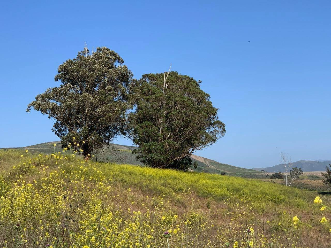 16. Lots / Land for Sale at 4655-4695 Sweeney Road Lompoc, California 93436 United States