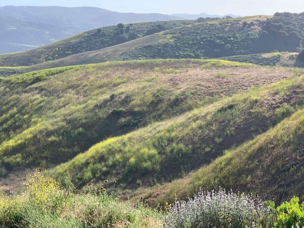 19. Lots / Land for Sale at 4655-4695 Sweeney Road Lompoc, California 93436 United States