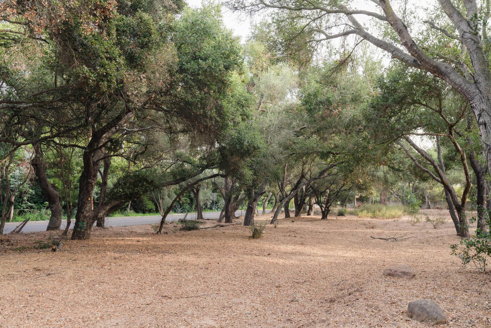 8. Lots / Land for Sale at 700 Riven Rock Road Montecito, California 93108 United States