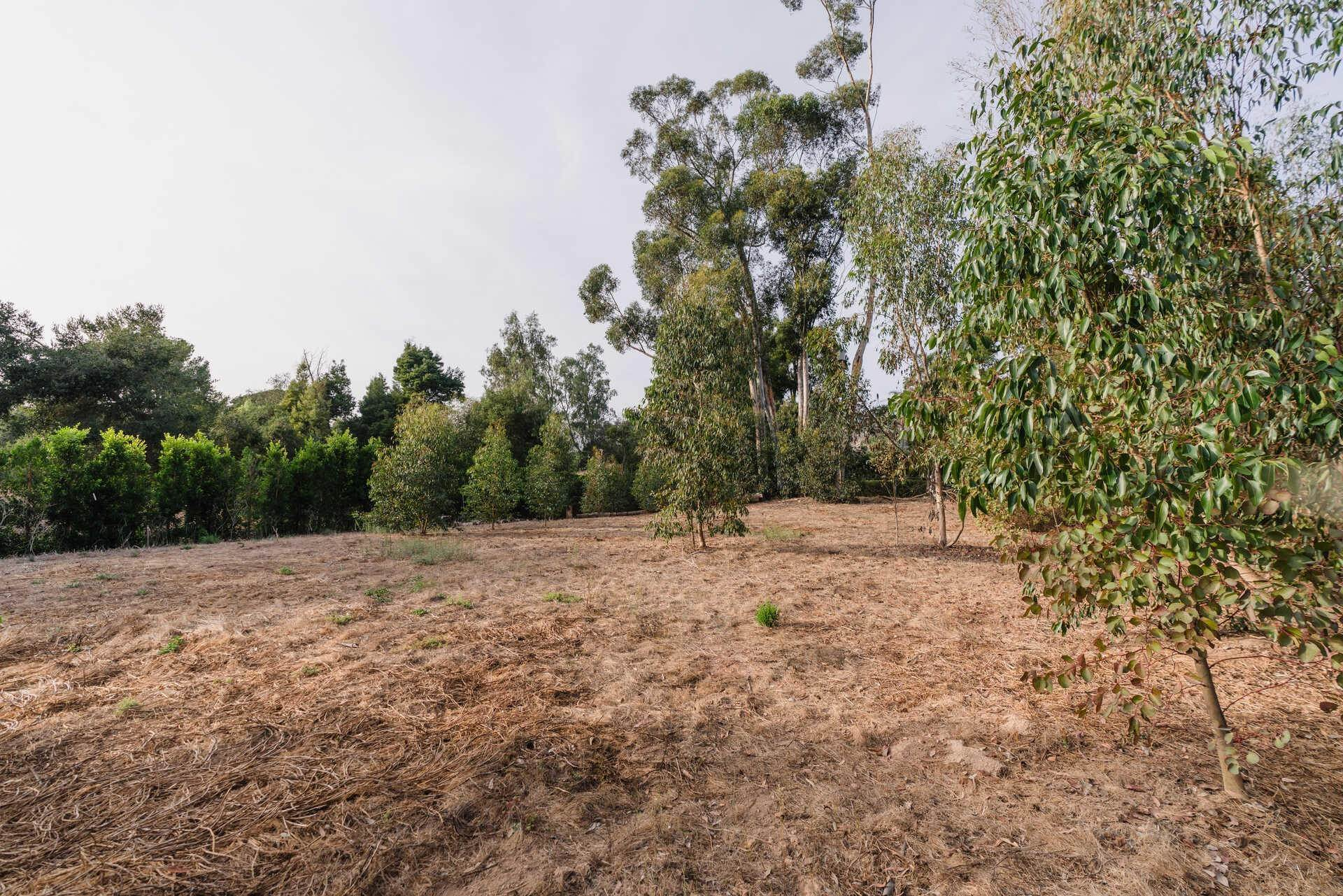 11. Lots / Land for Sale at 700 Riven Rock Road Montecito, California 93108 United States
