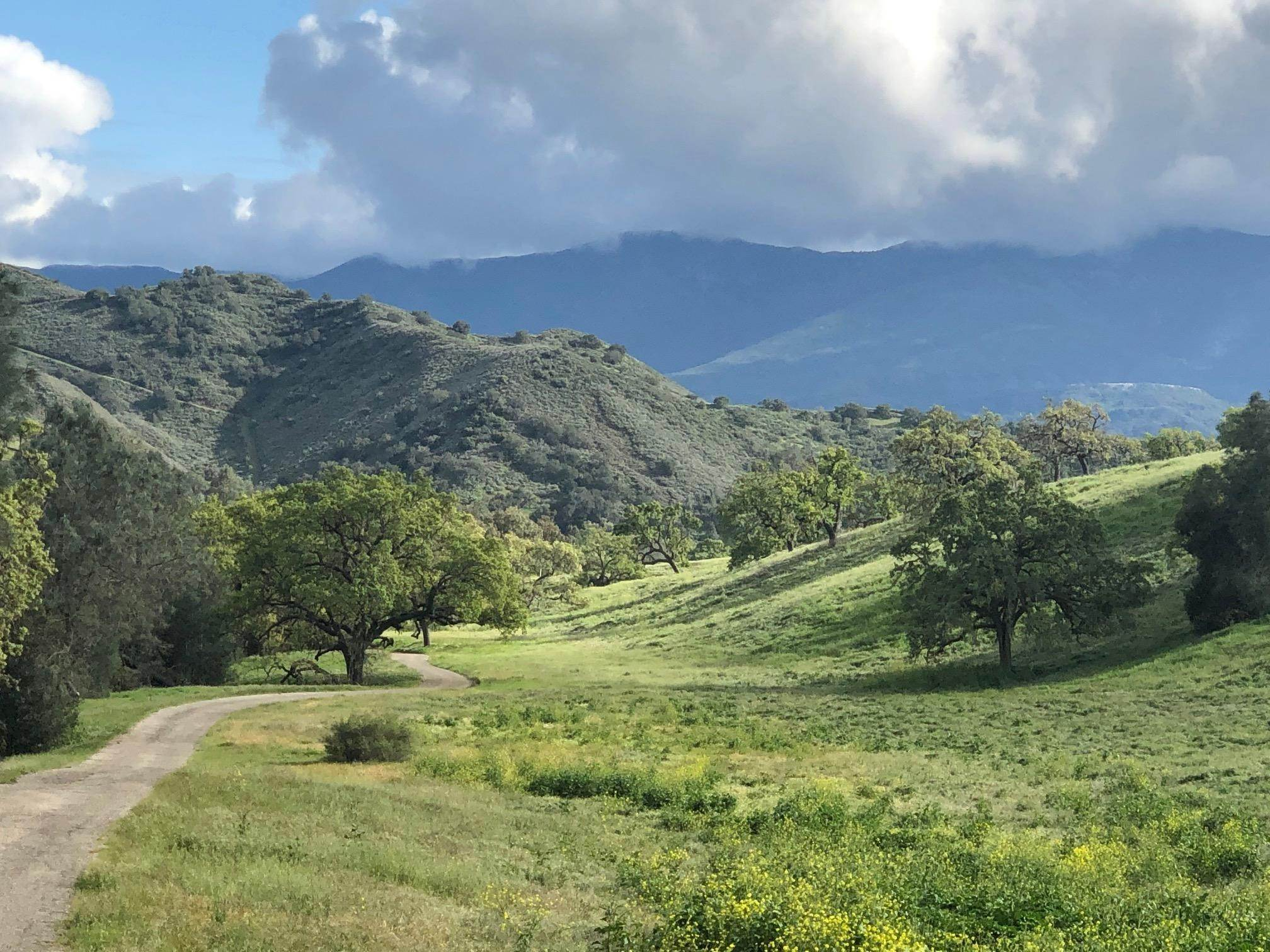 Farm and Ranch Properties for Sale at 7355 Happy Canyon Road Road Santa Ynez, California 93460 United States