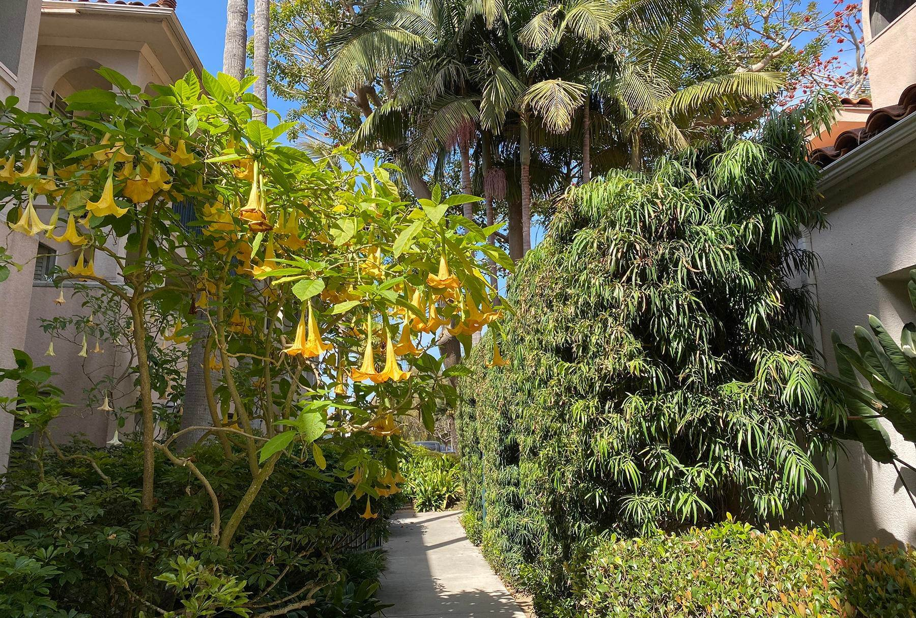 20. Co-op / Condo for Sale at 239 Por La Mar Circle Santa Barbara, California 93103 United States