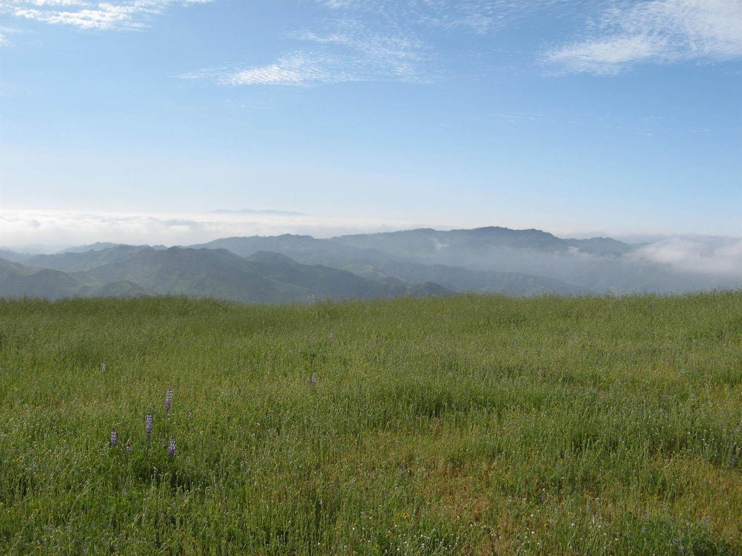 5. Lots / Acreage for Sale at Sulphur Mountain Road Ojai, California 93023 United States