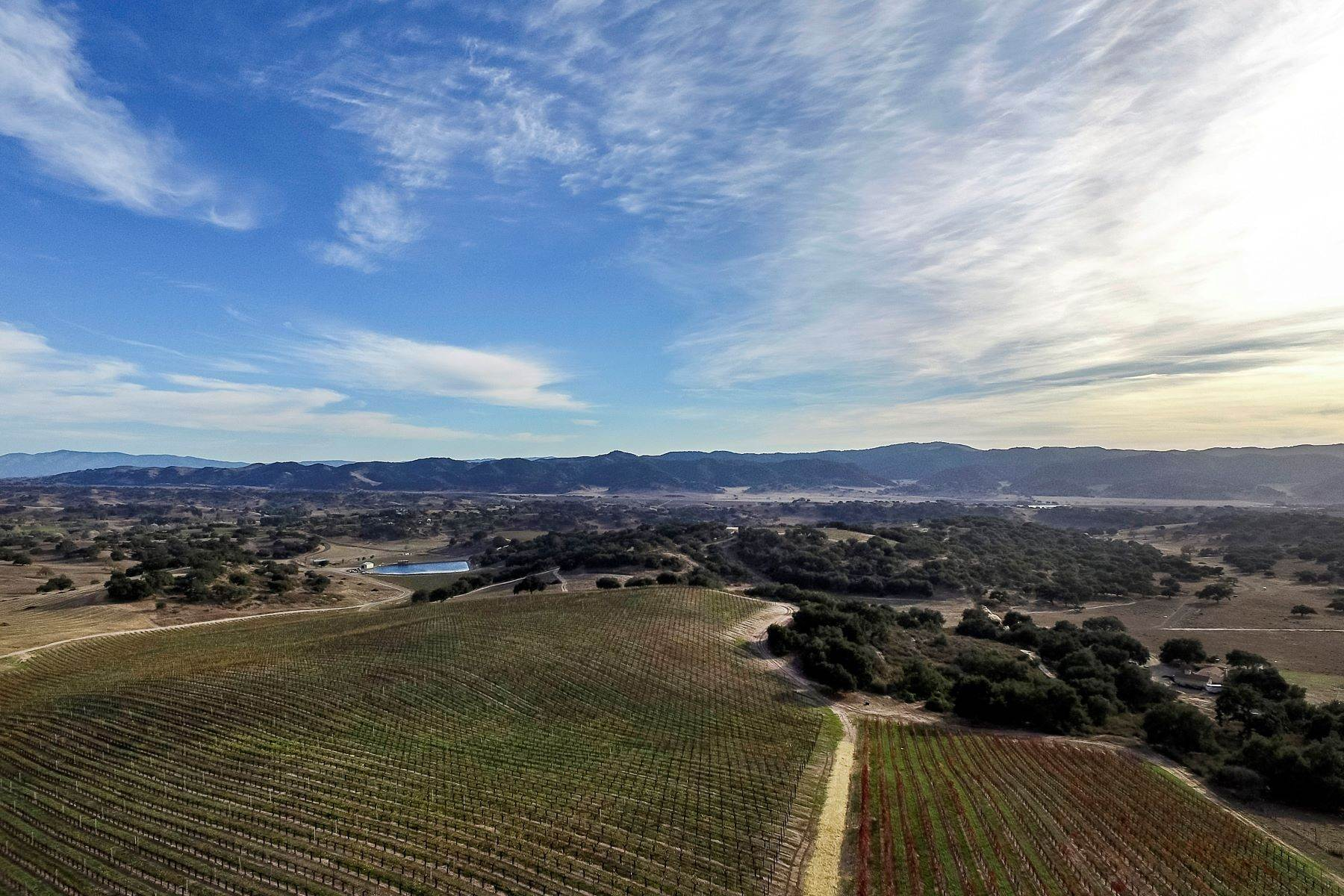 Vineyard Real Estate for Sale at Alisos Canyon Vineyard 9981 Alisos Canyon Road Los Alamos, California 93440 United States